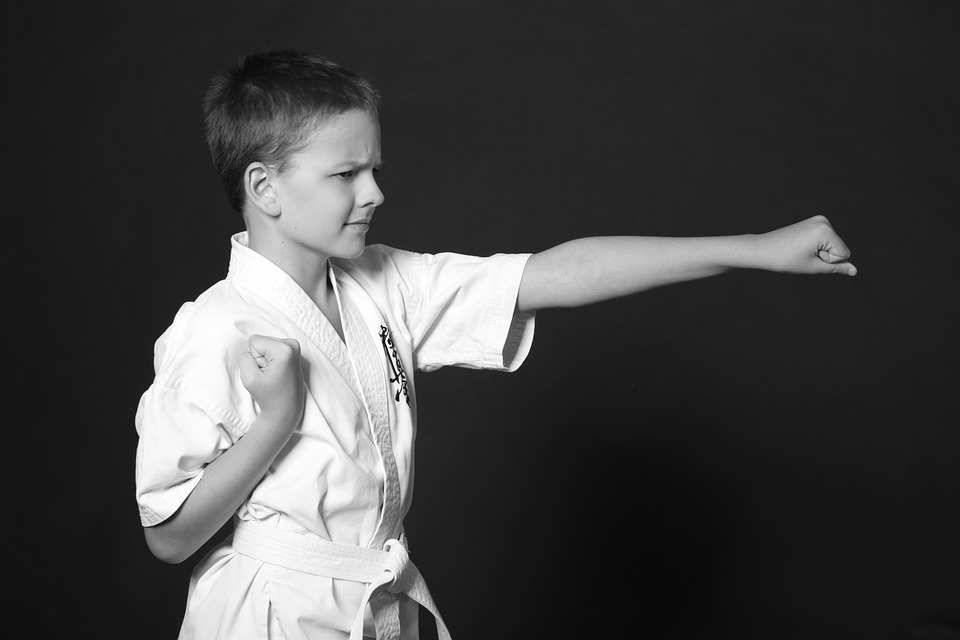 Kata y Karate - Gimnasio Bonafau en Pamplona